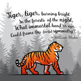 Bengal Tiger in forest poster design. Double exposure vector template. Old poem by William Blake illustration on foggy. Background Stock Image