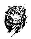 Bengal tiger. Graphic drawing. Realistic graphic illustration Royalty Free Stock Photo