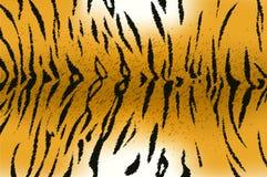 Bengal tiger stripe pattern. Vector illustration of bengal tiger stripe pattern Stock Image
