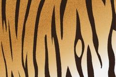 Bengal tiger stripe pattern. Vector illustration of bengal tiger stripe pattern Royalty Free Stock Images