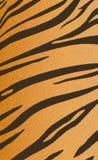 Bengal tiger stripe pattern Stock Images