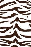 Bengal tiger stripe pattern Royalty Free Stock Image