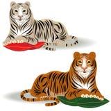 Bengal-und Amur-Tiger Lizenzfreie Stockfotografie