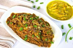 Bengali-Fisch-Curry Lizenzfreies Stockbild