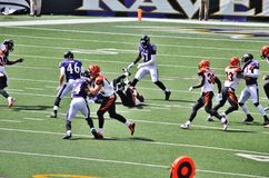 Bengals at Ravens 2015. NFL stadium home game between Cincinnati Bengals and Baltimore Ravens Stock Photography