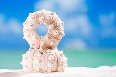 Bengeloberteil Starfish mit Ozean, auf weißem Sandstrand Stockfotografie