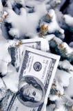 Beni congelati Fotografie Stock