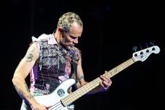 Flea, bass guitar player of Red Hot Chili Peppers music band, performs in concert at FIB Festival. BENICASSIM, SPAIN - JUL 15: Flea, bass guitar player of Red royalty free stock photos