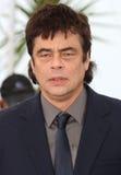 Benicio Del Toro Foto de archivo libre de regalías