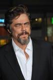 Benicio Del Toro Immagini Stock