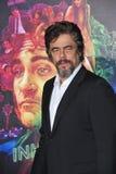 Benicio Del Toro Lizenzfreie Stockfotografie