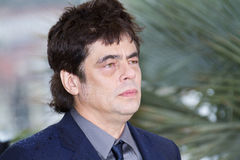 Benicio del Toro Royalty Free Stock Photography