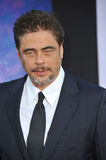 Benicio Del Toro Royalty Free Stock Photos