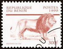 BENIN - CIRCA 1999: A stamp printed in Benin from the `Mammals` issue shows Lion Panthera leo, circa 1999.