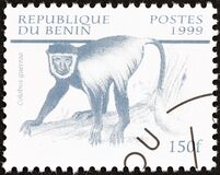 BENIN - CIRCA 1999: A stamp printed in Benin from the `Mammals` issue shows Mantled guereza Colobus guereza, circa 1999.
