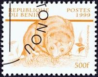 BENIN - CIRCA 1999: A stamp printed in Benin from the `Mammals` issue shows Potto Perodicticus potto, circa 1999.