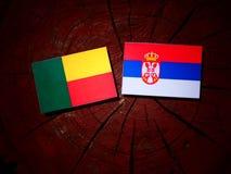 Benin flag with Serbian flag on a tree stump isolated. Benin flag with Serbian flag on a tree stump royalty free stock image
