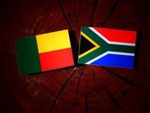 Benin flaga z południe - afrykanin flaga na drzewnym fiszorku odizolowywającym Zdjęcia Stock