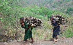 Benishangul Gumuz, Etiopía: Mujeres que llevan la leña imagen de archivo libre de regalías