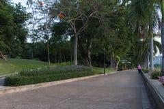 Benjakiti Park Stock Photography
