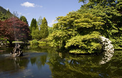 Benmore Botanic Gardens Royalty Free Stock Photography