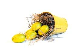 Benna gialla con le uova di Pasqua gialle Fotografia Stock