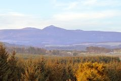 Bennachie from Fintray, Aberdeenshire, Scotland. A winter morning with a light sprinkling of snow with sunshine on Bennachie by Inverurie, Aberdeenshire Royalty Free Stock Images