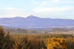 Bennachie från Fintray, Aberdeenshire, Skottland Royaltyfria Bilder