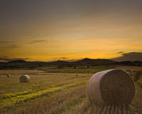 Bennachie harvest sunset Stock Images