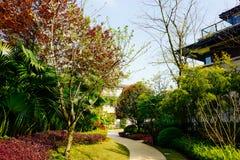 Bens imobiliários de Chongqing imagens de stock