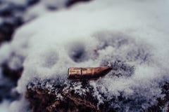 Bent Bullet After Being Shot sur le fond de sable de Milou image libre de droits