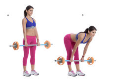 Bent Over Barbell Row. Step by step instructions: Stand facing with your legs slightly wider than shoulder width apart holding a barbell. (A) Bend forward at royalty free stock image