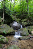 Bent Run-Wasserfall nahe Waren PA Lizenzfreie Stockfotografie