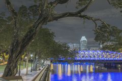 Bent tree in Singapore. Scenic tree bent over river by night in Singapore city Royalty Free Stock Image