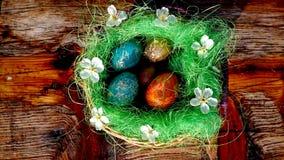 Bent u klaar voor Pasen? Royalty-vrije Stock Foto's