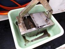 Benthic chwyt z próbką inside w basenie obraz stock