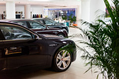Bentley cars for sale Royalty Free Stock Photography