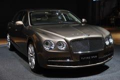 Bentley, das Sporn fliegt Lizenzfreie Stockbilder