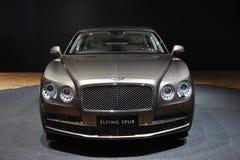 Bentley, das Spornfront fliegt Stockfotografie