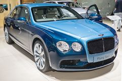 Bentley die aansporing vliegen Stock Foto