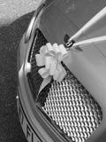 Bentley Wedding car royalty free stock photography