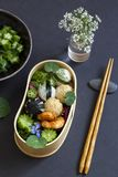 Japanese bento box lunch. Bento box with onigiri, prawns and vegetables royalty free stock photography