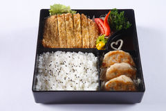 Bento set of Deep fried pork (Tonkatsu), Gyoza, Japanese rice, i Stock Photography