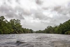 Bentota River. Royalty Free Stock Image
