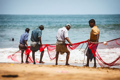 BENTOTA, SRI LANKA - 26 APR 2013: Sri Lankan fishermen pull big Royalty Free Stock Image