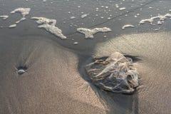 Benutzter Plastiktascheabfall auf Sandstrand Stockbilder