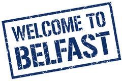 benvenuto al bollo di Belfast Immagine Stock Libera da Diritti