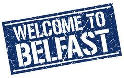 benvenuto al bollo di Belfast Fotografia Stock