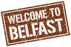 benvenuto al bollo di Belfast Fotografie Stock Libere da Diritti