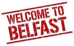 benvenuto al bollo di Belfast Fotografia Stock Libera da Diritti